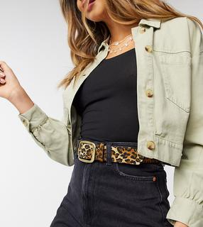My Accessories - London Exclusive leopard print belt with square gold buckle