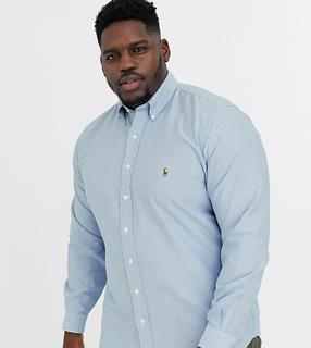 Polo Ralph Lauren - Ralph Lauren – Big & Tall – Oxford-Hemd in klassischer Passform mit Button-Down-Kragen und Polospieler-Logo in Blau