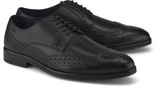 JOOP! - Schnürschuh Kleitos in schwarz, Business-Schuhe für Herren