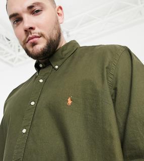 Polo Ralph Lauren - Big & Tall – Stückgefärbtes Oxford-Hemd in Olivgrün mit Polospieler-Logo
