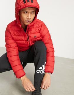 adidas Performance - adidas Training – Wattierte Jacke mit Kapuze in Rot-Schwarz